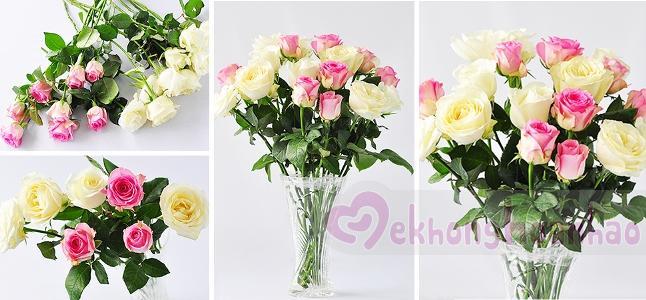 Cách cắm hoa hồng đơn giản nhất với sắc trắng và hồng