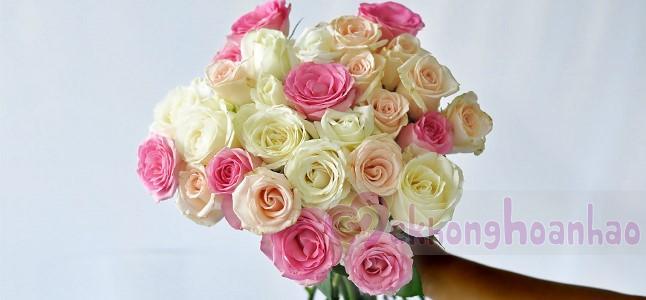 Bật mí cách cắm hoa hồng đẹp nhất cho bạn gái