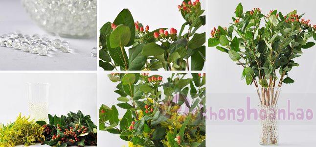 Cách cắm hoa chuỗi ngọc đẹp dịu dàng và tinh tế