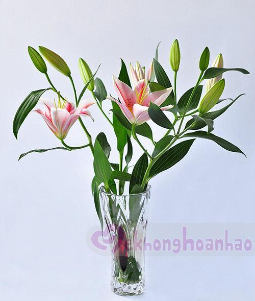 Mãn nhãn với bộ sưu tập cách cắm hoa hồng đẹp tinh tế hình 18