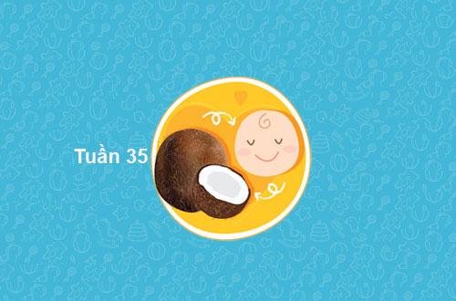 su-phat-trien-cua-thai-nhi-thang-thu-8-tuan-32-tuan-35-hinh-anh4