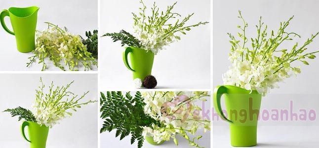 Cách cắm hoa lan đẹp nhẹ nhàng và thanh khiết