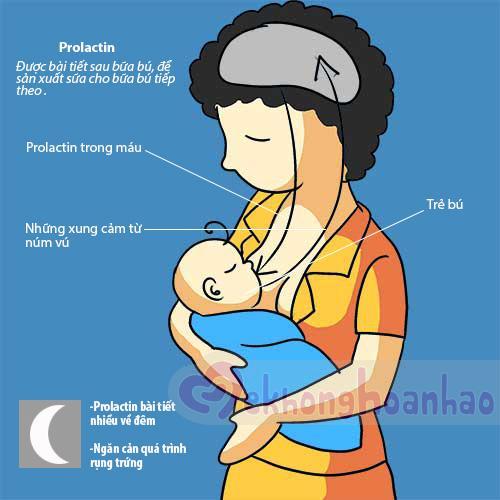 Tìm hiểu về cơ chế tiết sữa mẹ khi cho con bú - hình ảnh 2