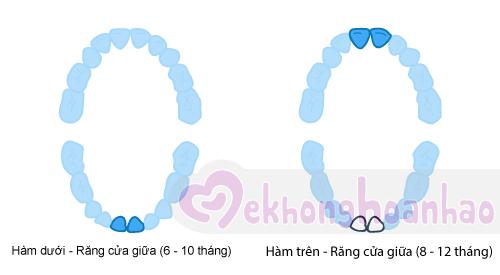 tre-moc-rang-sua-the-nao-hinh-anh2