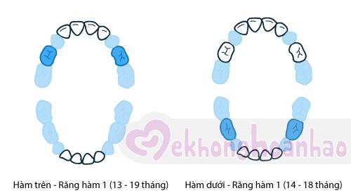 tre-moc-rang-sua-the-nao-hinh-anh4