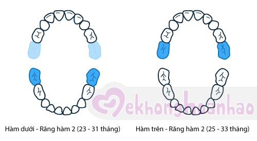 tre-moc-rang-sua-the-nao-hinh-anh6