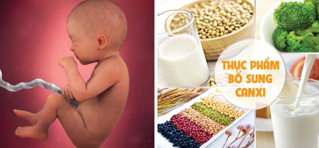 Mang thai tuần 31: Sự phát triển của thai nhi và mẹ bầu nên ăn gì