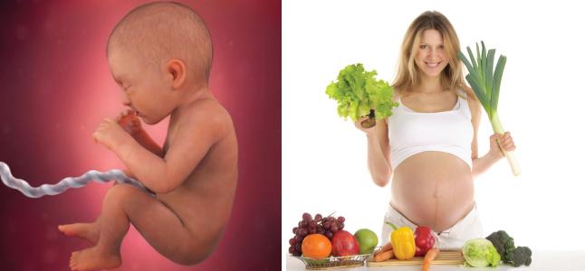 Mang thai tuần 32: Sự phát triển của thai nhi và mẹ bầu nên ăn gì