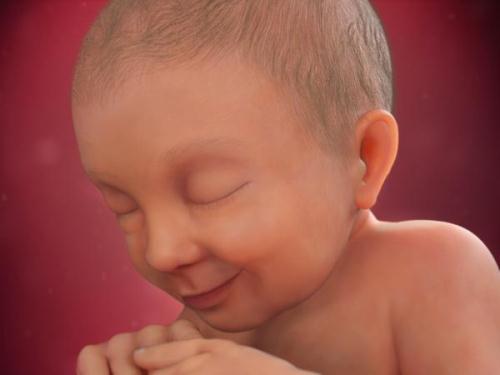 Mang thai tuần 37: Sự phát triển của thai nhi và mẹ bầu nên ăn gì