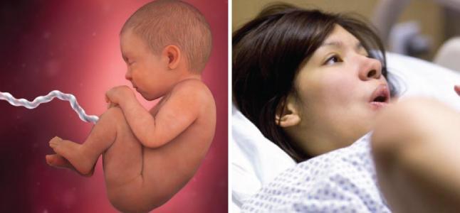 Mang thai tuần 39: Sự phát triển của thai nhi và mẹ bầu nên ăn gì