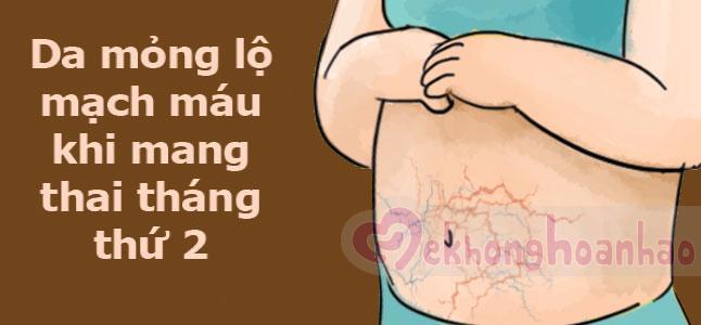 Da mỏng lộ mạch máu khi mang thai tháng thứ 2
