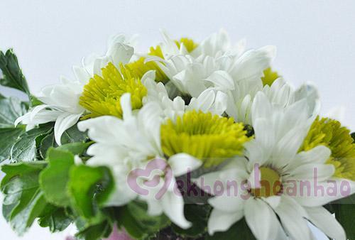 Hướng dẫn cách cắm hoa cúc đẹp nhỏ nhắn xinh xắn hình 1