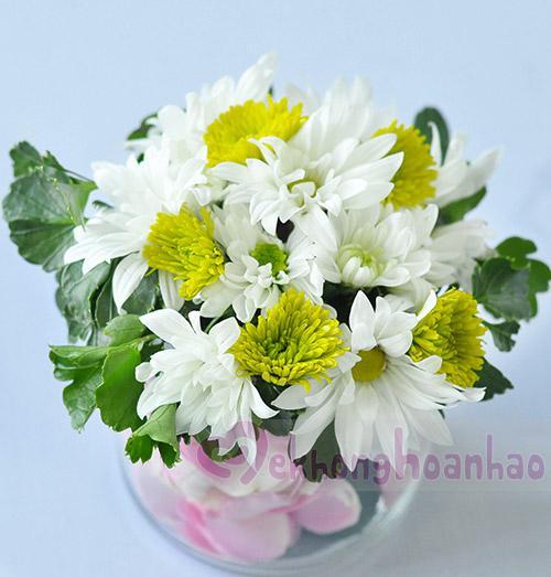 Hướng dẫn cách cắm hoa cúc đẹp nhỏ nhắn xinh xắn hình 12