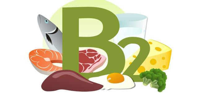 Khám phá vai trò của Vitamin B2 đối với cơ thể