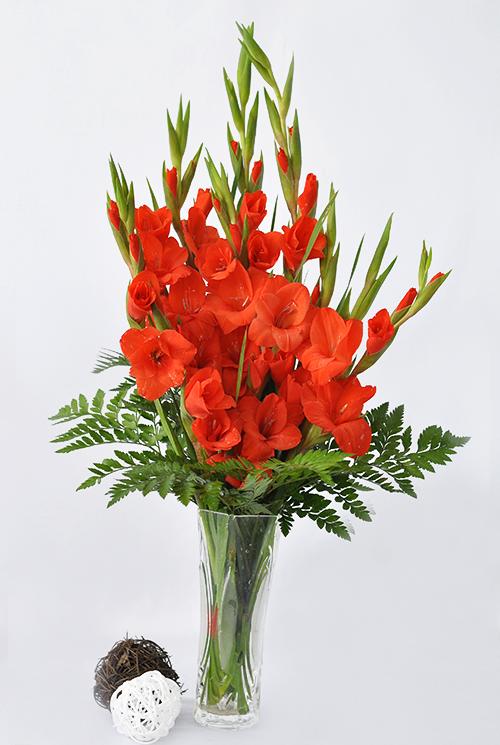 Cách cắm hoa lay ơn đỏ trên bàn thờ ngày Tết hình ảnh 13