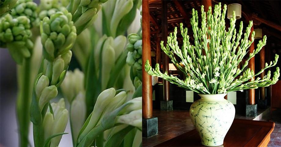 Cách cắm hoa huệ trắng trên bàn thờ ngày Tết hình ảnh 15