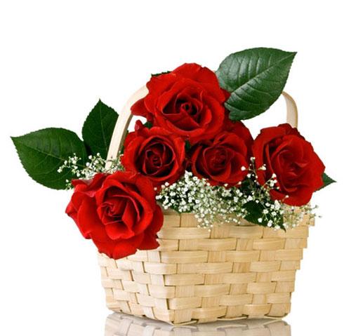 Mãn nhãn với bộ sưu tập cách cắm hoa hồng đẹp tinh tế hình 41
