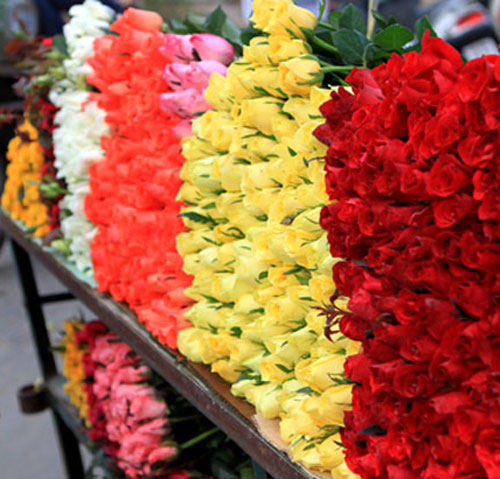 Mãn nhãn với bộ sưu tập cách cắm hoa hồng đẹp tinh tế hình 45
