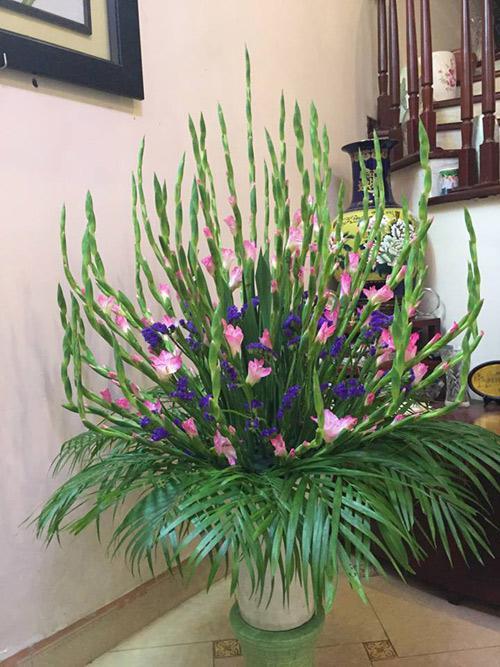 Cách cắm hoa lay ơn ngày Tết đón Tài Lộc vào nhà hình ảnh 14