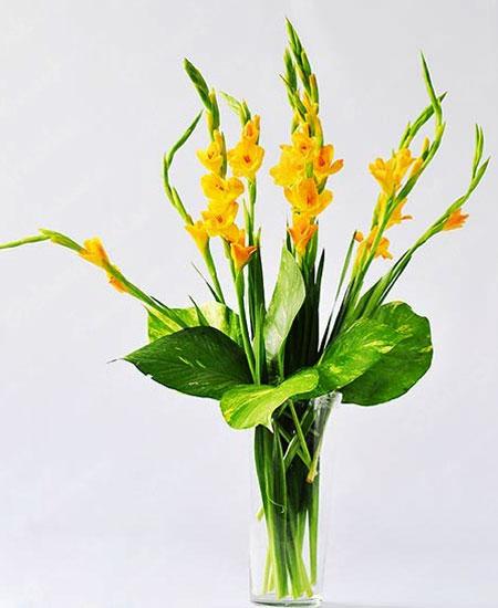 Cách cắm hoa lay ơn ngày Tết đón Tài Lộc vào nhà hình ảnh 12