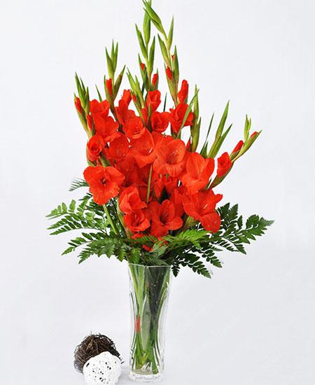Cách cắm hoa lay ơn ngày Tết đón Tài Lộc vào nhà hình ảnh 7