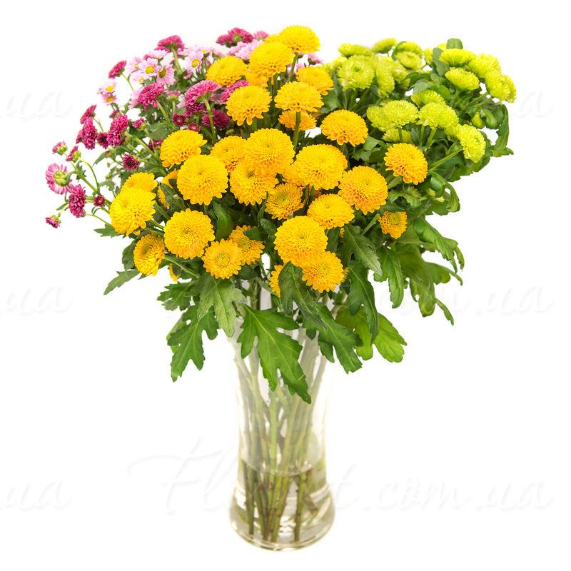Bật mí cách cắm hoa cúc cực đẹp nhưng vô cùng đơn giản hình 7