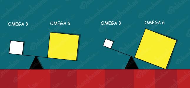 Tỉ lệ omega 3 và omega 6 phù hợp đối với sức khỏe