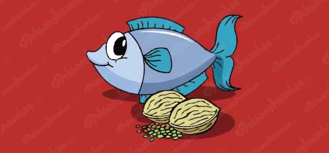 Top 12 thực phẩm giàu omega 3
