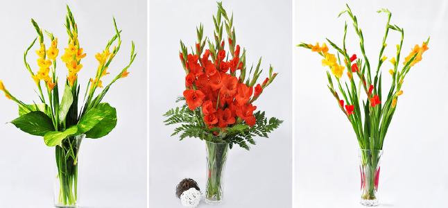 Các mẫu cắm hoa lay ơn ngày Tết màu đỏ và màu vàng siêu đơn giản!