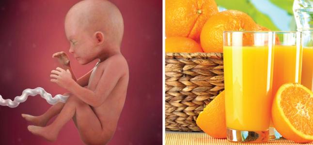 Mang thai tuần 23: Sự phát triển của thai nhi và mẹ bầu cần ăn gì